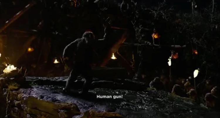 14.humangun